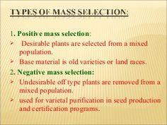 Breeding self pollinated crops