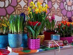 vasos-plantas