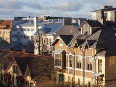Puolalanpuisto, Turku Nature Animals, Archipelago, Helsinki, Cathedral, Coastal, Old Things, Villa, River, Mansions