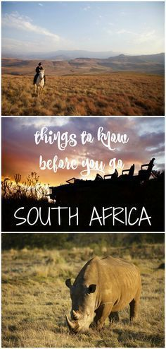 All you need to know before you travel to South Africa.