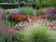 Drifts of perennials including grasses. sedum, helenium, and salvia in The Walled Garden of Scampston Hall, by Piet Oudolf