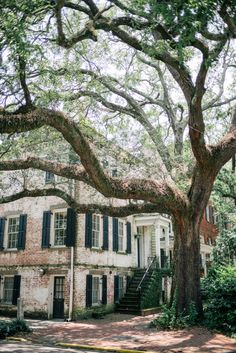 Homes in Savannah, George