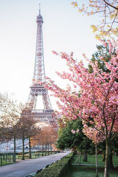 paris + eiffel tower