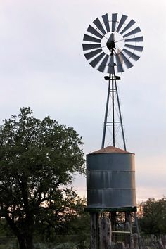 south Texas ranch July '11
