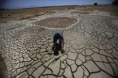 California breaks drought record as 58% of state hits driest level  More than half of California is now under the most severe level of drought for the first time since the federal government began issuing regular drought reports in the late 1990s, according to new data released Thursday.  http://www.latimes.com/local/lanow/la-me-ln-california-drought-worsens-record-20140731-story.html