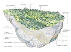 Terroir / climatologie/ géologie - Ermitage Pic Saint Loup - Site officiel de l'Ermitage du Pic Saint Loup, Coteaux du Languedoc, Hérault