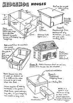 Hedgehog houses