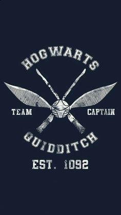 Hecha por mi (@nermosu29)❤❤ #harrypotter #hogwartsquidditch