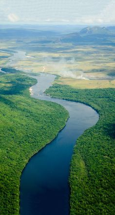 Have you thought about the Amazon rainforest as your next holiday destination?