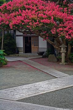 Kamakura, Japan It looks nice even though doesn't have grass. very clean and don't have to worry about mowing the lawn