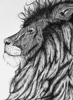 My drawing of a lion #zentangle #lion #art