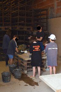 L'atelier enfant pour découvrir le métier de briquetier