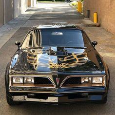 My dream car. 1978 Pontiac Trans Am Maserati, Bugatti, Lamborghini, Pontiac Cars, Auto Retro, Pontiac Firebird Trans Am, Gm Car, Car Wheels, American Muscle Cars