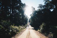 The Swallows, Trans-America Trail, TAT, Bikepacking
