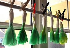Filth Wizardry: Saint David's day crafts Paper (or coffee filter) pretend leeks. David's top hats Dragon, etc. St Dwynwens Day, Saint David's Day, St Patrick's Day Crafts, Crafts For Kids, San David, Daffodil Craft, Celtic Crafts, Nursery Crafts, Balloons And More