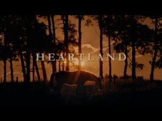 """Heartland Clothing is dedicated to the Wardrobe and style of CBC's hit show """"Heartland."""" We bring you the latest Fashion from the actors On and Off set. *We are an unofficial heartland fan site* Heartland Cbc, Heartland Seasons, Best Tv Shows, Best Shows Ever, Healing Heart, Tv Actors, Country Life, It Cast, Horses"""