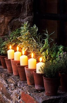 OUTDOOR LIGHTING WITH HERBS: Herbs are tough to highlight in the evening, but the idea of placing single candles in small terra cotta pots in front of them is charming...and effective.