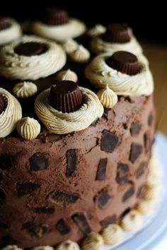 Peanut Butter & Chocolate Cheesecake CAKE