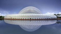 Florida Polytechnic University by Santiago Calatrava..