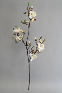 Magnolia Creme-Wit, 115cm