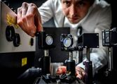 La ciencia demuestra cómo el exceso de testosterona interfiere con el buen juicio | N+1: artículos científicos, noticias de ciencia, cosmos, gadgets, tecnología