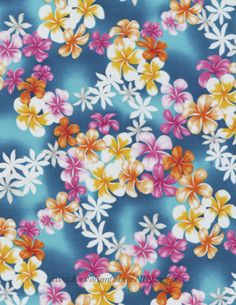 By 1//2 Yard Batik by Mirah Fabric Aster Violet Purple Pink Daisy Flowers Floral