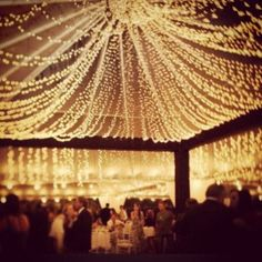 Christmas lights in bulk or use to decorate a wedding receptions. 600 lights!!! Let your event or decor shine with these beautiful white strand lights. They glo