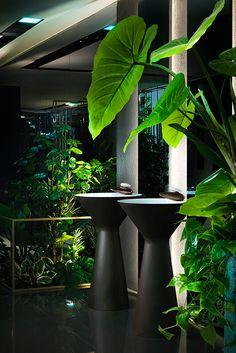 Home Interior Velas Architectural Wellness 2018 Romantic Home Decor, French Home Decor, Cute Home Decor, Natural Home Decor, Luxury Homes Interior, Home Interior Design, Interior Decorating, Simple Interior, Interior Colors