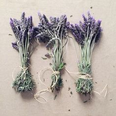 Recently we bought a large bunch of lavender for spare change from a farmer's roadside market stall. It was a lovely addition to our . Green Cleaning, Indigo, Lavender, Decorating, Creative, Tips, Flowers, Plants, Dekoration