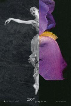 New York City Ballet Book by June Bae, via Behance
