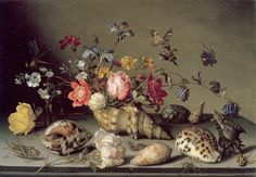 Balthasar van der Ast Still Life with Flowers, Shells and Insects  mid 1630s 24 x 34.5cm. Oil on panel Collection P.C.W.M. Dreesmann, London via