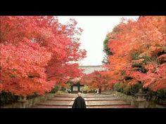 Great HD video of #Japan, from Okinawa to Hokkaido, all four seasons http://youtu.be/8C7xXRPTSHk