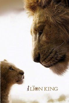 The Lion King Teljes Film Magyarul online filmnézés # Lion King Quotes, Lion King Art, Lion King Movie, Lion Art, Disney Lion King, The Lion King, Lion King Pictures, Lion Images, Le Roi Lion Film