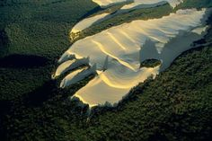 Sand dune in the heart of vegetation on Fraser island, Queensland, Australia. Fraser Island, named after Eliza Fraser, who was shipwrecked on the island in 1836, is the world's largest sand island. On top of this rather infertile substratum, a humid tropical forest has developed in the midst of which wide dunes intrude, moving with the wind.