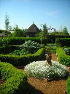 French parterre gardens on pinterest traditional for Garden design oxfordshire