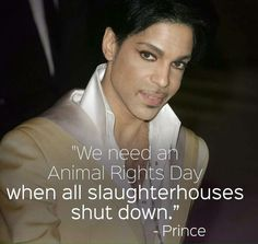 we need an Animal Rights Day when all slaughterhouses shut down ~ courtesy Prince #vegan