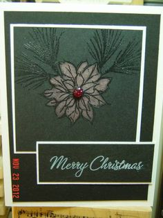 Watercolor Winter stamp set - Bleached Poinsettia
