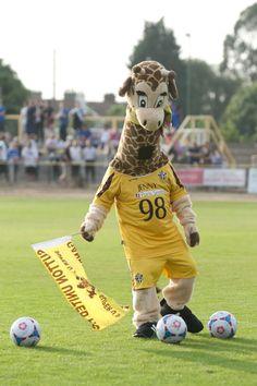 Sutton United - Jenny the Giraffe.