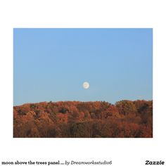 moon above the trees panel wall art