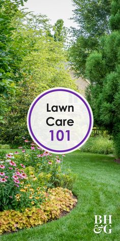 Keep your grass looking it's best all year long with our lawn care tips. We're s… Keep your grass looking it's best all year long with our lawn care tips. We're sharing tips on weeding, mowing, watering and much more! Outdoor Landscaping, Landscaping Plants, Landscaping Ideas, Lawn And Landscape, Landscape Design, Landscape Plans, Garden Design, Herb Garden, Lawn And Garden