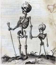 old book illustration of 2 skeletons - adult child. First thing I looked at? The child's horizontal ribs compared to the adult's bucket handles. Memento Mori, Crane, Dance Of Death, Danse Macabre, Macabre Art, Vanitas, Grim Reaper, Skull And Bones, Skull Art