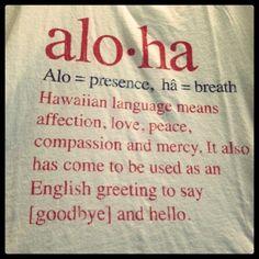 Aloha Now by Discover Hawaii Tours Hawaii Tours, Aloha Hawaii, Hawaii Vacation, Hawaii Travel, Blue Hawaii, Oahu, Hawaii Quotes, Aloha Spirit, Hawaiian Tattoo