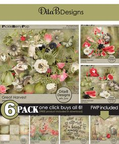 DitaB Designs:  GREAT HARVEST  6-Pack for just $6 This is a valu...