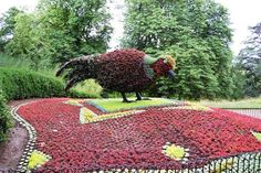 Topiary bird near the Aviary at Waddesdon Manor July 2008