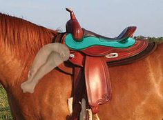 Guide to Western saddle fitting - great article!  Highly recommended.