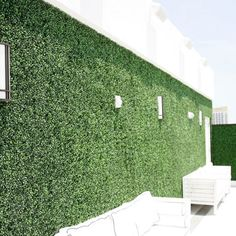EasyGrass Artificial Ivy is the leading choice for your vertical garden, living wall, green wall, or artificial plant wall project in Miami - Ft Lauderdale Artificial Green Wall, Artificial Plants, Faux Murs, Ivy Plant Indoor, Fake Ivy, Fake Walls, Ivy Wall, Vertical Garden Wall, Wall Exterior