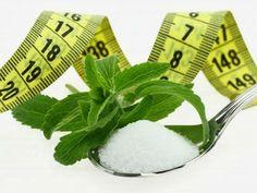 Zdrowa i natauralna słodycz - STEWIA