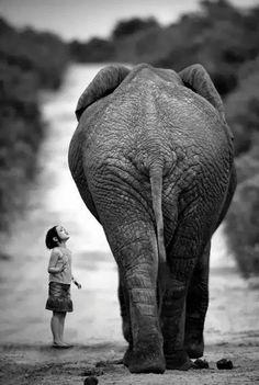 Chouette photographie artistique noir et blanc