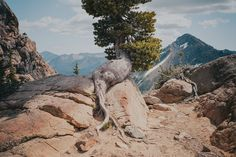 Cody Cobb Cascadia photography
