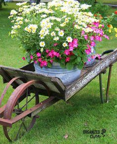 28 DIY Vintage Wheelbarrow Planter Ideas - Unique Balcony & Garden Decoration and Easy DIY Ideas Garden Junk, Garden Planters, Garden Art, Garden Design, Balcony Garden, Most Beautiful Gardens, Amazing Gardens, Wheelbarrow Planter, Garden Pictures
